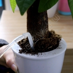 Автополив комнатных растений с таймером (питание АА/USB, 12 растений)