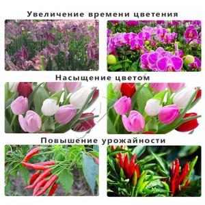 Фитолампа полного спектра светодиодная для растений (30 см, 18 Вт, 18 красных, 6 синих) Rayway